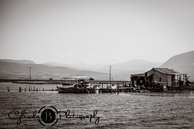 Messolonghi, Greece-1181