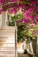 Nidri, Greece-0788