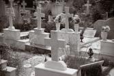 gravestone, grave yard