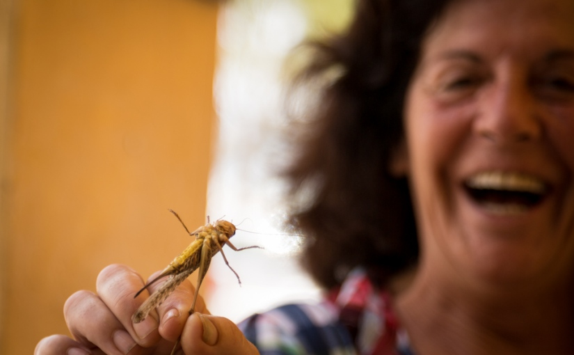 Listening to Stories in Nidri,Greece