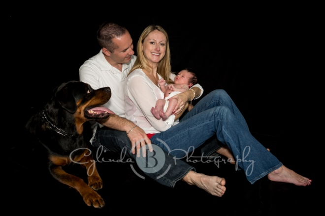 family portrait, dog, Rottweiler, newborn
