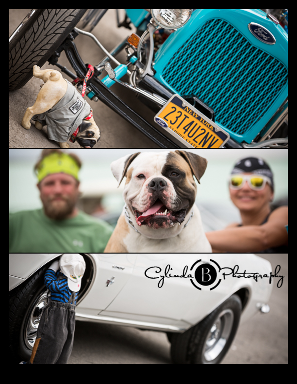 car show, syracuse nationals, bull dog