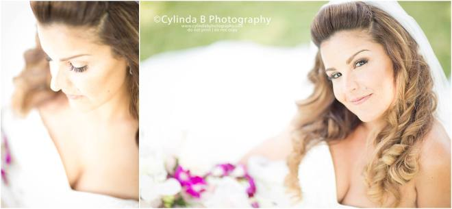 wedding, photography, emerson park, auburn, cylinda b photography, bridal portrait