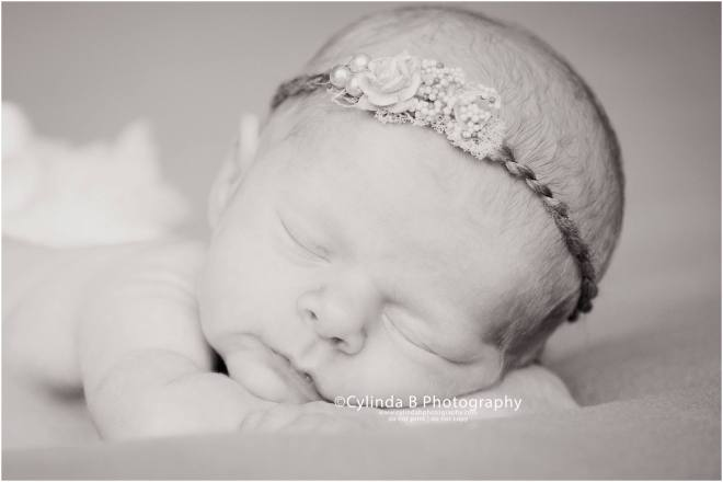 newborn, photos, syracuse, photography, cylinda b photography