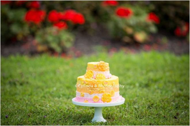syracuse, ny, photography, cake smash, cylinda b photography, cake