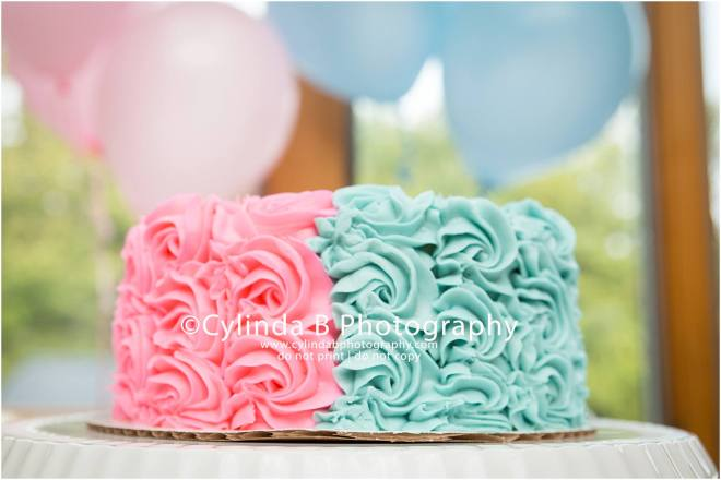 Gender Reveal, Cake, Family Portraits, Cylinda B Photography, Syracuse-21