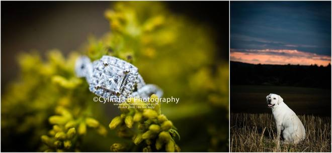 Jamesville Beach Engagement, Syracuse, Cylinda B Photography-16