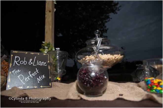syracuse wedding photographer, wedding, davaneys, gillie lake-28