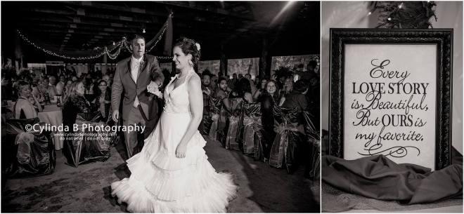 syracuse wedding photographer, wedding, davaneys, gillie lake-29