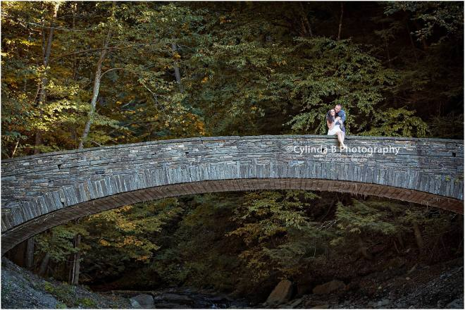 Fillmore Glen Engagement, men in blue, engagement, syracuse, cylinda b photography