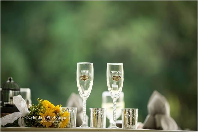 Wellington house wedding, fayetteville, NY, Wedding, cylinda b photography, syracuse wedding-46