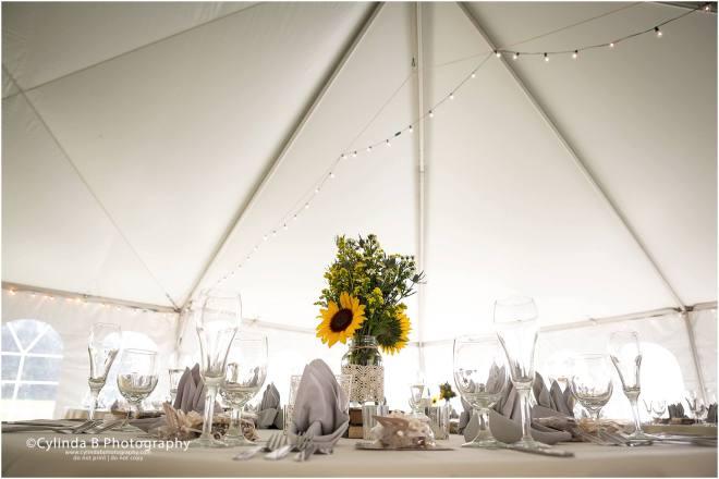 Wellington house wedding, fayetteville, NY, Wedding, cylinda b photography, syracuse wedding-48