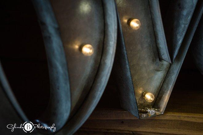 Hayloft on the Arch, Wedding, Vernon Wedding, Cylinda B Photography, Rustic, Photos-13
