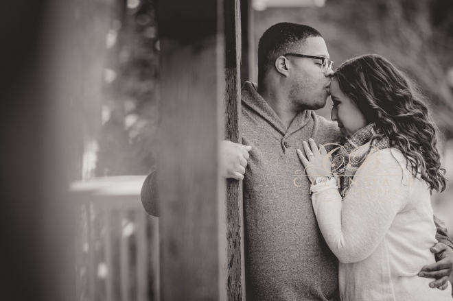 baldwinsville-engagement-red-mill-inn-syracuse-engagement-photos-cylinda-b-photography-20